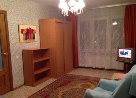 Снять от хозяина - фото. Снять однокомнатную квартиру посуточно от хозяина без посредников, Санкт-Петербург, проспект Космонавтов, 65к4 - фото.